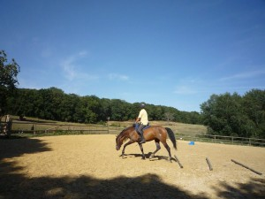 quintessence-equestre-exercice1